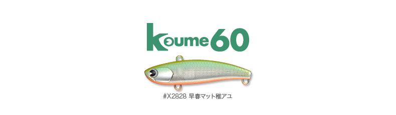 chiayu_koume60