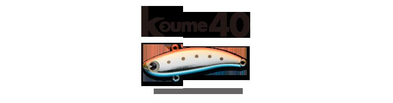 summer_koume40