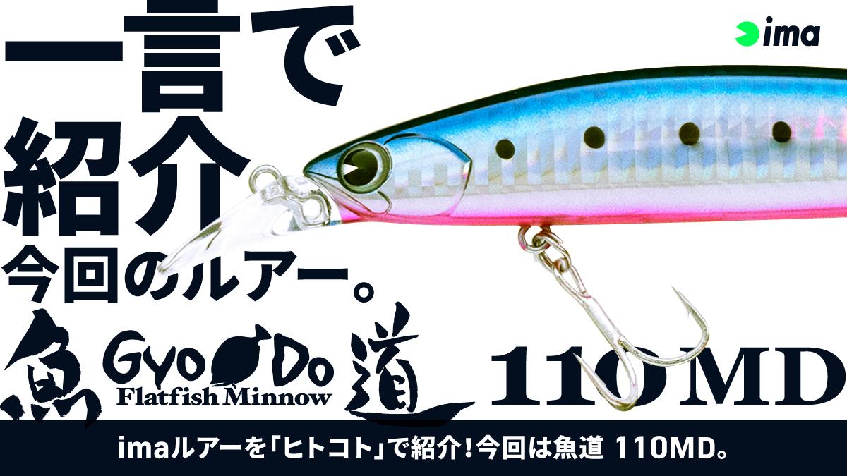 ヒトコトイントロ。 #47 - 魚道 110MD